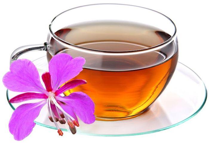 полезные свойства чая кипрей