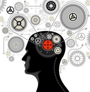 развитие внимания мозга